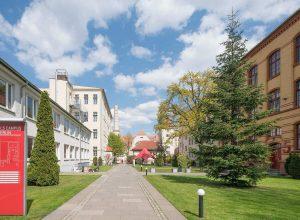 letnja škola nemačkog